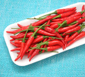 Fresh chilis Royalty Free Stock Image