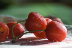 Fresh Chilled Cherries Stock Images