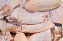 Fresh chilled chicken wings. Wait sell ​​in the market Stock Image