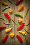 Fresh Chilli Pepper Selection Stock Photography