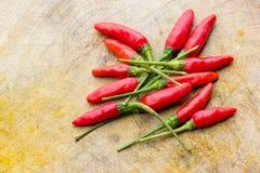 Fresh chilli Stock Photography