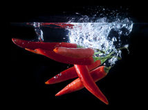 Fresh chilli splash Stock Photography