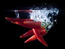 Fresh chilli splash Stock Photography