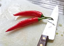 Fresh chillis kitchen Stock Images