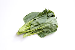Fresh Chinese broccoli Stock Photo