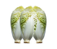 Fresh chinese cabbage on a white background. Chinese cabbage on white background Royalty Free Stock Photography