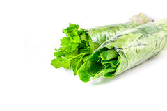 Fresh chinese kale vegetables wrapped in plastic film isolated Royalty Free Stock Images