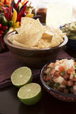 Fresh Chips and Salsa Stock Images