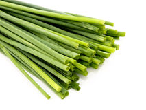 Fresh chives Royalty Free Stock Images