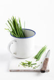 Fresh Chives In Enamel Mug Royalty Free Stock Image