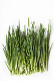 Fresh chives Royalty Free Stock Image