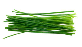 Fresh chives herb Royalty Free Stock Photo