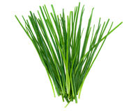 Fresh chives herb Royalty Free Stock Image