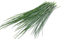 Fresh chives Royalty Free Stock Photos