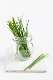 Fresh Chives In Jar Royalty Free Stock Photos
