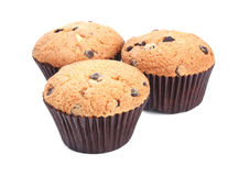Fresh chocolate chip muffins on a white Stock Photography