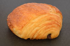 Fresh chocolate croissant. Stock Photo