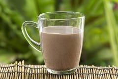 Fresh chocolate Milk Stock Photos