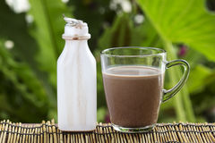 Fresh chocolate Milk in a glass Stock Photos