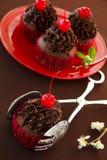 Fresh chocolate muffins Stock Photos