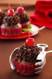 Fresh chocolate muffins Stock Image