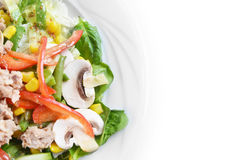 Fresh chopped tuna salad Royalty Free Stock Image
