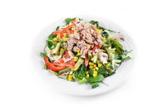 Fresh chopped tuna salad Stock Image