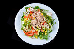 Fresh chopped tuna salad Royalty Free Stock Photo