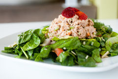 Fresh chopped tuna salad topped with strawberries Royalty Free Stock Image
