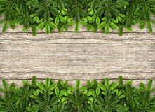 Fresh christmas tree branch over wooden background. Fresh christmas tree branches over rustic wooden background. green border from undecorated evergreen twigs Royalty Free Stock Photos