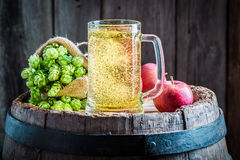 Fresh cider beer with apples, hops and wheat Stock Image