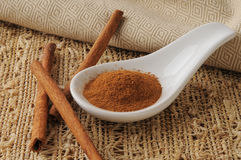 Fresh cinnamon Stock Photography