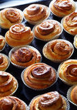 Fresh Cinnamon Buns Stock Photography