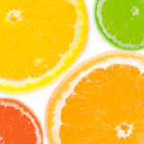 Fresh citrus Stock Images