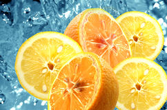 Fresh citrus background Royalty Free Stock Image