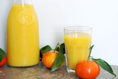 Fresh Citrus Blend Stock Image