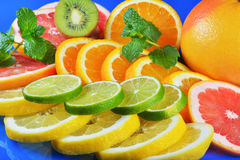 Fresh citrus  on blue background Stock Photography