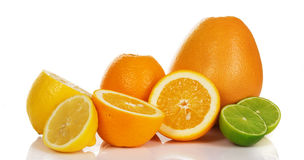Fresh citrus fruit Stock Images