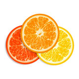 Fresh citrus fruit isolated on white background Stock Photography
