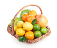 Fresh citrus fruit with leaves in a wicker basket Royalty Free Stock Photo
