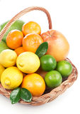 Fresh citrus fruit with leaves in a wicker basket Stock Photos
