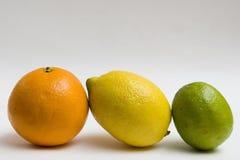 Fresh citrus fruits Stock Images