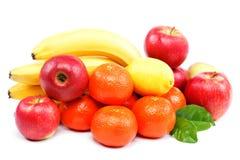 Fresh citrus fruits . Stock Images