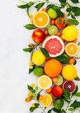 Fresh citrus fruits royalty free stock images