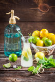 Fresh citrus fruits for cold drink Royalty Free Stock Images