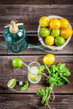 Fresh citrus fruits for cold drink Royalty Free Stock Photo
