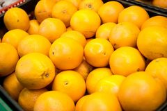 Fresh citrus fruits are on the counter in the store