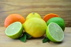 Fresh citrus fruits. Citrus fruits on a desk background Stock Image