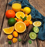 Fresh citrus fruits and old juicer Stock Photography
