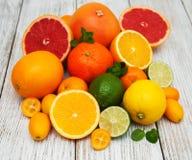 Fresh citrus fruits Royalty Free Stock Image